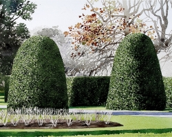 Kew Gardens Topiary 2. copy