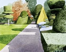 Levens Hall Topiary 2 copy