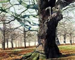 Richmond Park. Old Oaks copy