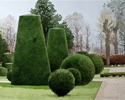 Topiary at Schonnbrune Vienna